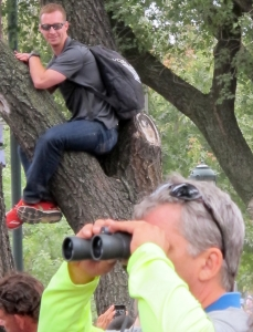 Joel Ament had climbed up this tree for Pope Francis' arrival at the Ben Franklin Parkway in Philadelphia on Sept. 27, 2015.
